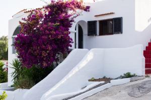 House Ibiza (95 of 109)